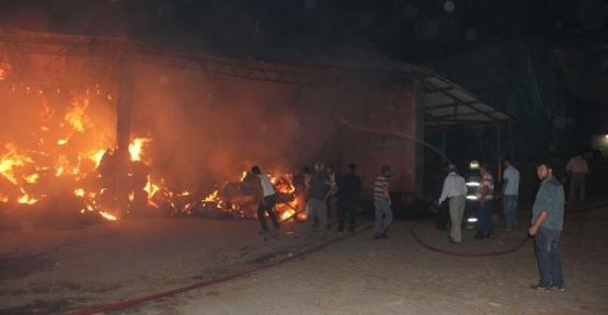 Havzada Samanlık Yangını 300 Ton Saman Yandı- Video Haber