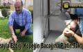 Kazayla Ezdiği Köpeğin Bacağına Platin Taktırdı